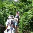 Decouverte de la faune et la flore au Mont Agou