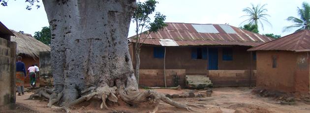 Tree-Village.jpg